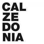كالزيدونيا